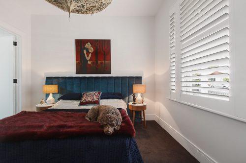 savvy-interiors-by-design-bedroom-dog